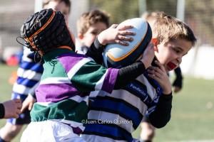 Foto: Juan Carlos Ogazón SUB6  Escuela de Rugby del Ciencias 28/01/2017